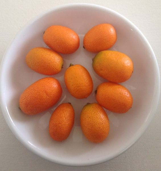 Project Kahani - Super Fruits Kumquats